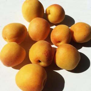 Итальянский абрикосовый пирог 8